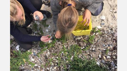 Danijoje vyko Baltijos jūros projekto tarptautinė stovykla