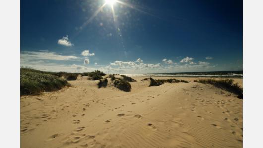 Gamtos ir kultūros paveldo atspindžiai Vakarų Lietuvos ugdymo įstaigose