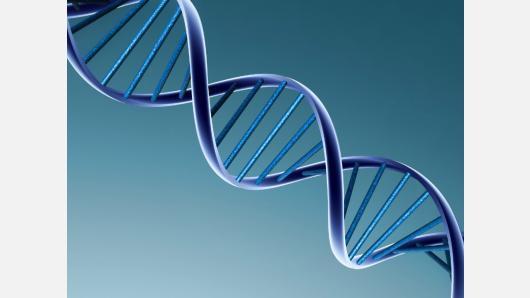 Kviečiame siųsti rašinius konkursui, skirtam DNR dienai paminėti