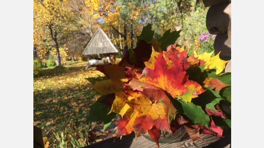 Tradicinės lietuvių šventės: etninės ir šiuolaikinės kultūros sąveika. Rudens šventės