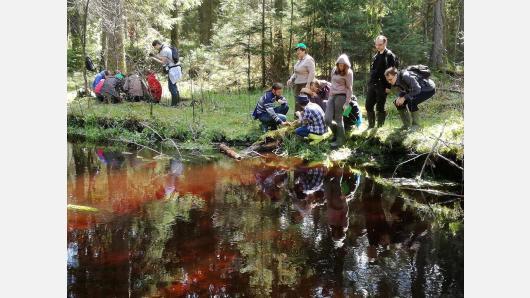 """Jaunieji miško bičiuliai kviečiami dalyvauti kasmetiniame konkurse """"Jaunimas Europos miškuose"""""""