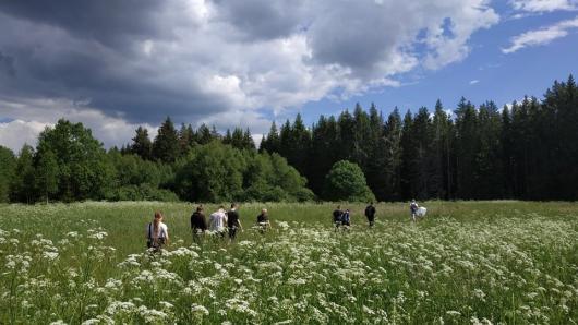 Mokiniai tyrinėja Lietuvos gamtą